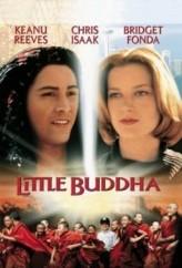 Küçük Buda (1993) afişi