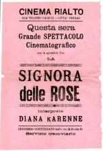 La Signora Delle Camelie (1919) afişi