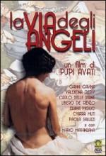 La Via Degli Angeli (1999) afişi