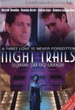 Luces De La Noche (1998) afişi