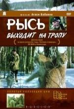 Lynx Follows The Path (1983) afişi