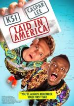 Laid in America (2017) afişi