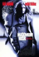 Maksimum Risk (1996) afişi