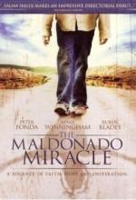 Maldonado Mucizesi