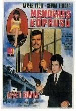 Menderes Köprüsü (1968) afişi