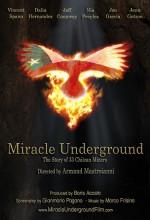 Miracle Underground (2015) afişi