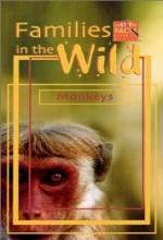Monkeys (1989) afişi