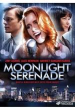 Moonlight Serenade (2009) afişi
