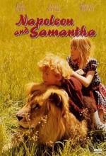 Napoleon And Samantha (1972) afişi