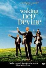 Ned Devine'i Diriltmek (1998) afişi