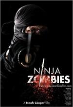 Ninja Zombiler (2010) afişi