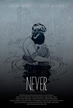 Never (2014) afişi