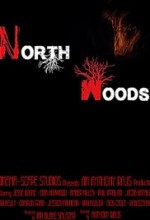 North Woods (2016) afişi