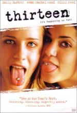 On Üç (2003) afişi