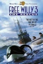 Özgür Willy 3