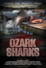 Ozark Sharks (2016) afişi