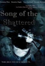 Parçalanmış şarkı (2010) afişi