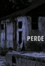 Perde(ı) (2010) afişi