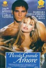 Piccolo Grande Amore (1993) afişi