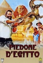 Piedone D'egitto (1980) afişi