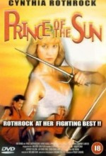 Prince Of The Sun (1990) afişi