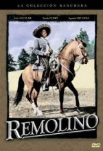 Remolino (1961) afişi