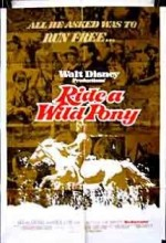 Ride A Wild Pony (1975) afişi