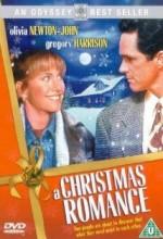Romantik Noel (1994) afişi