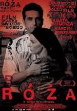 Roza (2011) afişi