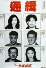 Saang Gong Yat Ho Tung Chap Faan (1994) afişi