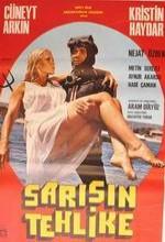 Sarışın Tehlike (1980) afişi