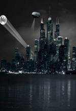Saving Gotham City