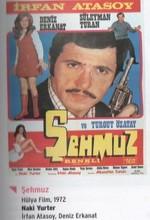 Şehmuz (1972) afişi
