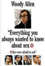 Seks Hakkında Bilmek İstediğiniz Her Şey