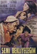 Seni Bekleyeceğim (1966) afişi