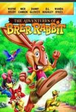 Sevimli Tavşanın Maceraları (2006) afişi