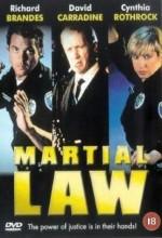 Silahsız Dövüş (1991) afişi