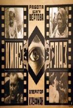 Sine-göz (1924) afişi