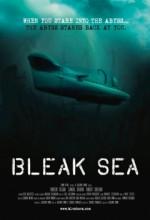 Soğuk Deniz (1) afişi