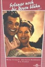 Solange Noch Die Rosen Blüh'n (1956) afişi