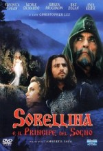 Sorellina E ıl Principe Del Sogno (1996) afişi