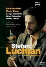 Stefan Luchian (1981) afişi