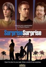 Surprise, Surprise (2009) afişi