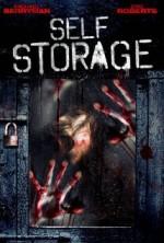Self Storage (2013) afişi