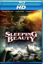 Sleeping Beauty (2014) afişi