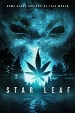 Star Leaf (2015) afişi