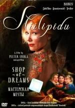 Stiilipidu (2005) afişi