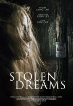 Stolen Dreams (2015) afişi