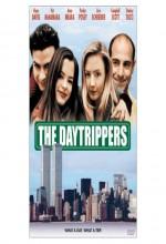 The Daytrippers (1996) afişi