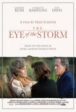 The Eye Of The Storm (2011) afişi